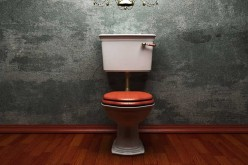 Don't Waste On The Flush – New Toilet Technologies