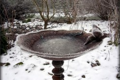 Protect Your Valuable Bird Bath This Winter