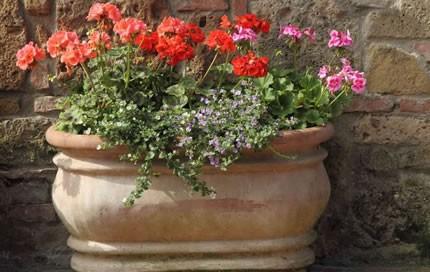 garden-container