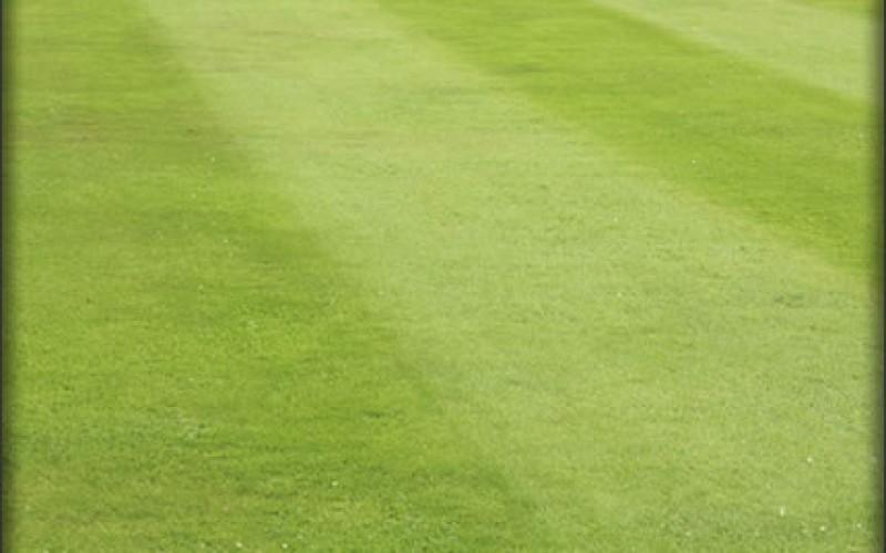 Lawn Mower Maintenance Tips & Upkeep