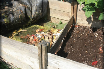 Your Summer Composting Project
