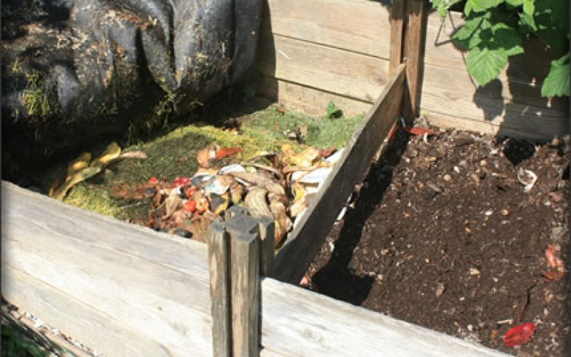 How to Speed Up the Composting Process