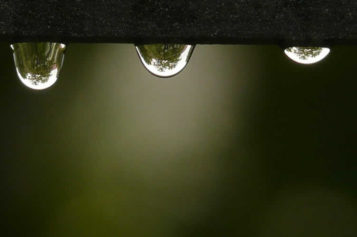 Fed Up Of Water Build Up In Basement? Invest In Sump Pumps