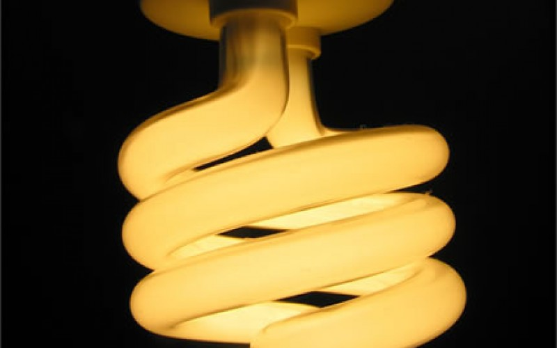 What Are Energy Star Qualified Light Bulbs?