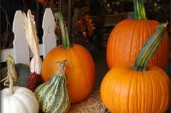 Home Décor: DIY Decoration Ideas For Fall