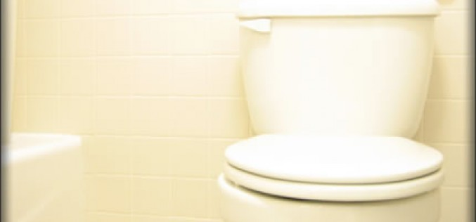How to Fix Your Clogged Toilet
