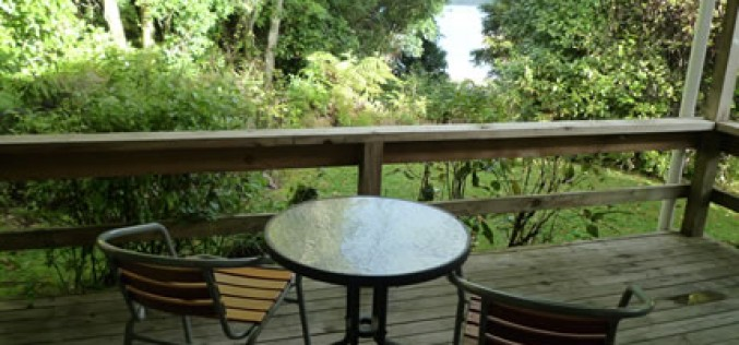 DIY Deck: An Easy Guide to Building Your Own Backyard Deck