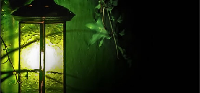 Outdoor Lights That Make Your Garden More Attractive
