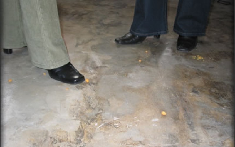 Your Guide to Polished Concrete