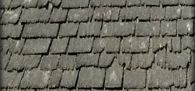 5 Essential Considerations for Your Roof Renovation