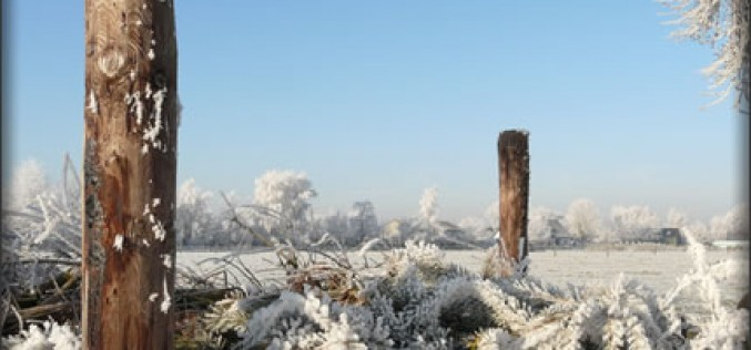 Winter Composting: Yes, That's Right