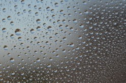 How Does Moisture Control in Your Home Save You Money?