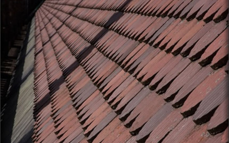 Common Types of Roof Damage and Their Solutions