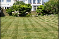 Best Lawn In Town: 6 Get Ready Tips For The Summer Months