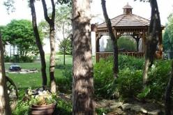 Fun Outdoor Activities To Install In Your Backyard