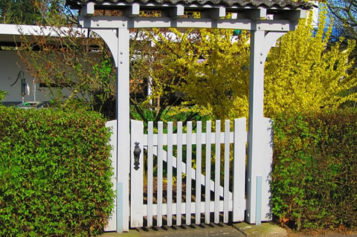Increase Your Home Value By Making These Simple Changes To Your Yard