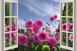Tips for Making Home Windows More Beautiful