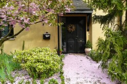 Landscaping Tips for Small Gardens