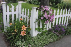 Landscaping and Landscape Products