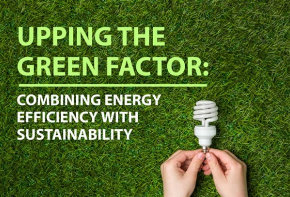 Upping the Green Factor: Combining Energy Efficiency with Sustainability
