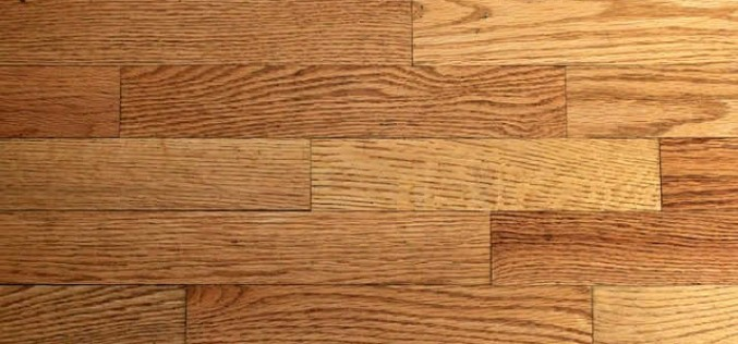 Flooring 101: Everything You Need to Know About Hardwood Floors