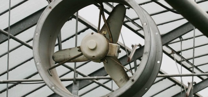 Why an Attic Fan is Crucial for Your Home