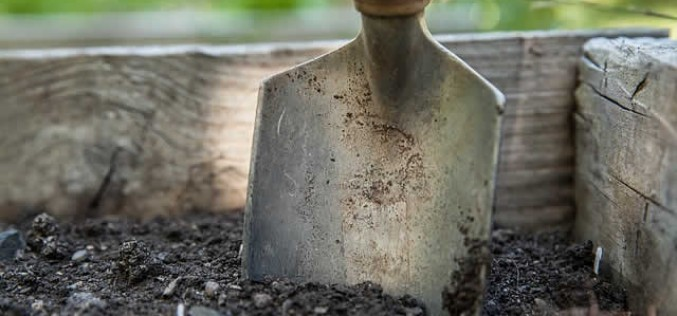 Getting Ready for Spring Planting – Make It Less Hectic This Year!