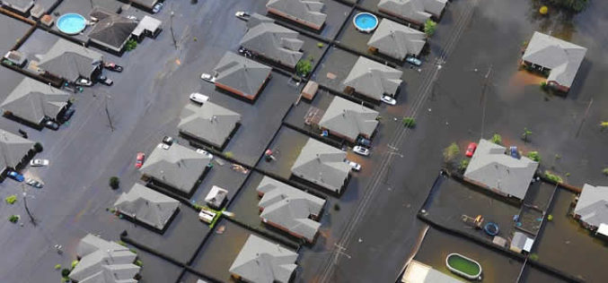 Hope Floats in Rising Waters: Flood Survival Strategies for Homeowners