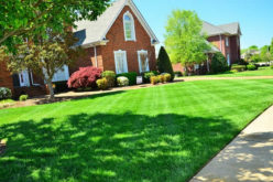 <span>Quick Checklist:&nbsp;&nbsp;&nbsp;&nbsp;</span> Five Lawn Care Tips That Will Keep Your Yard Looking Fresh