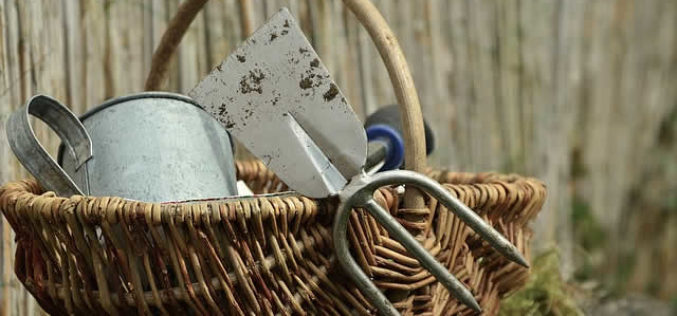 Different Types of Common Gardening Tools for DIY Projects