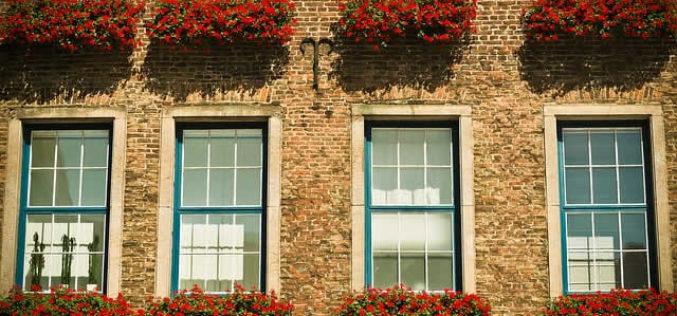 Take Environmentally-Friendly to the Next Level with Low-E Windows