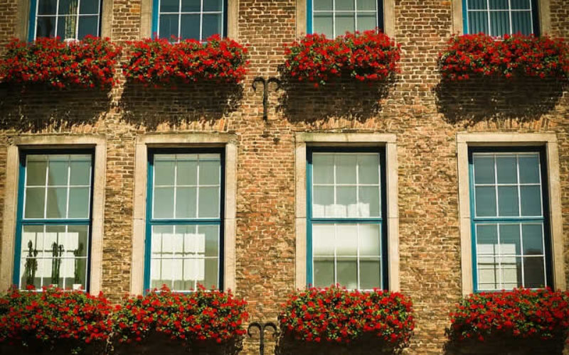 Take Environmentally-Friendly to the Next Level with Low-E Windows