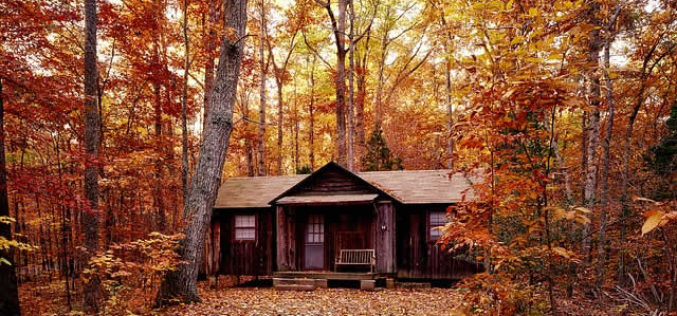 <span>Weekly Tip for Oct 30:</span> Cabin in Paradise: Maintenance Tips for Log Home Owners