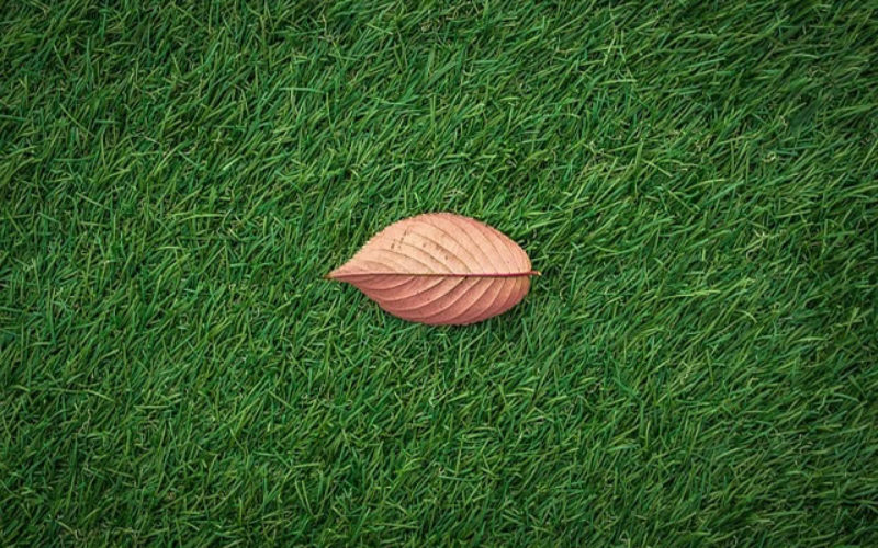 Everything You Need to Know Before Installing Artificial Turf to Your Garden