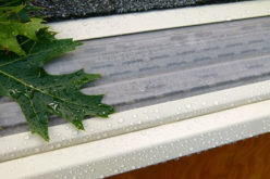 <span>Sunday Morning Tip for Jan 22:</span> Gutter Cleaning