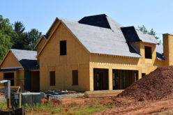 Building a Home? 5 Ways to Keep the Pests Away