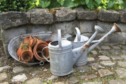 Spring Suggestions: 6 Tips for Revitalizing Your Outdoor Spaces