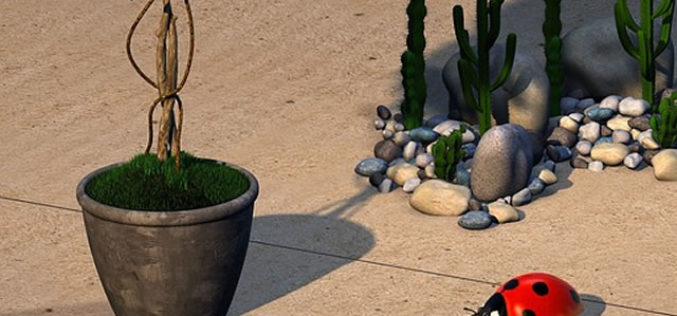 10 Ways to Decorate and Improve Your Backyard