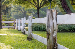 Top Considerations Before You Build A Fence