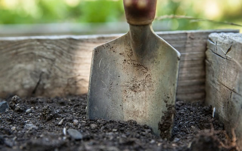 Landscape Maintenance Tips for Summer and Winter