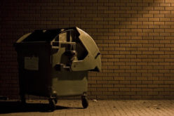 How to Hire Quality Rubbish Removal Service Providers Within Affordable Budget?