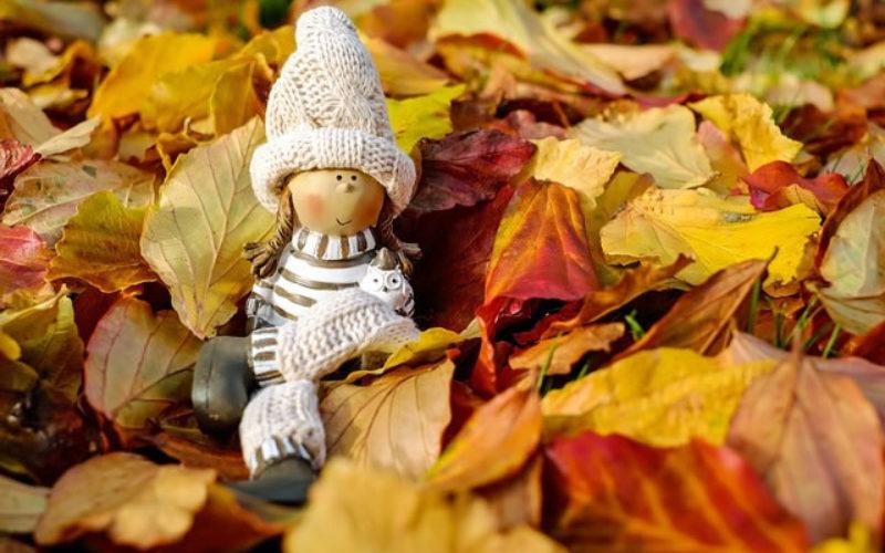 <span>Sunday Morning Tip for Oct 01:</span> Let the Fall Season Begin