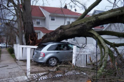 Home Harm: 3 Best Steps To Recovering From Hurricane Damage