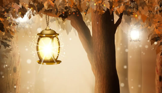How to Start Your Own Outdoor Landscape Lighting Project?