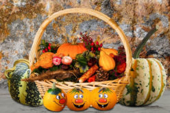 7 Unique Ideas For Affordable Thanksgiving Home Decorations