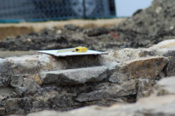 Home Renovation: 5 Major Signs You Need Foundation Repair
