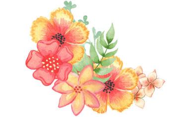 <span>Sunday Morning Tip for Jan 14:</span> Garden Design &#8230; In January