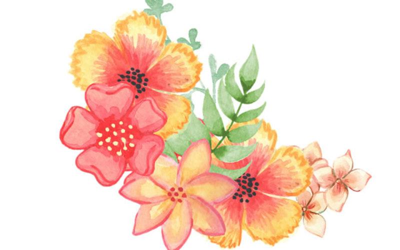 <span>Sunday Morning Tip for Jan 14:</span> Garden Design … In January