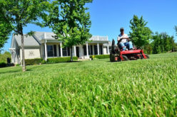 Top Things to Look for in a Lawn Care Company
