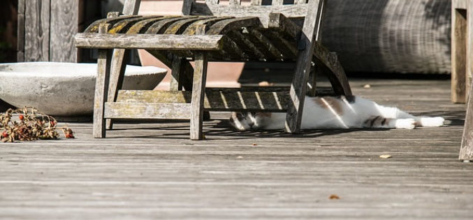 7 Tips for Taking Your Deck from Drab to Delightful